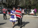 Mes de la Chilenidad