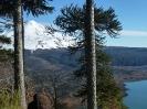 Un Treeking por las Nubes